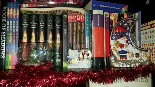 wintertour_bookshelf1