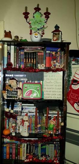 wintertour_bookshelf4