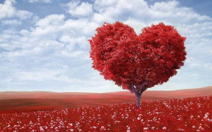 Dating5_Tree