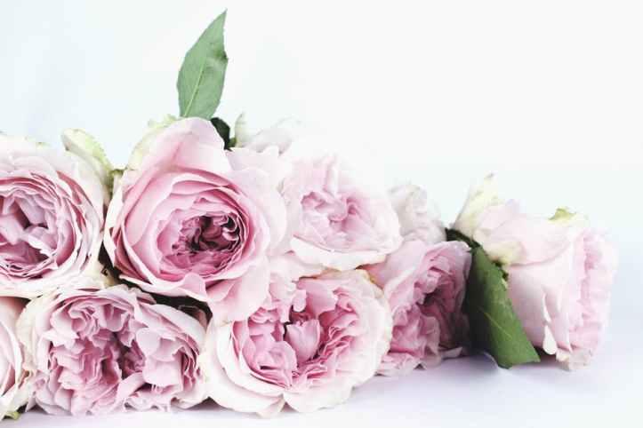Dating-LD-Flower