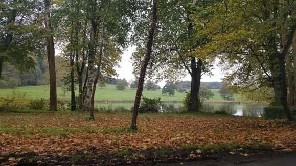MyHalloween-AutumnWalk1