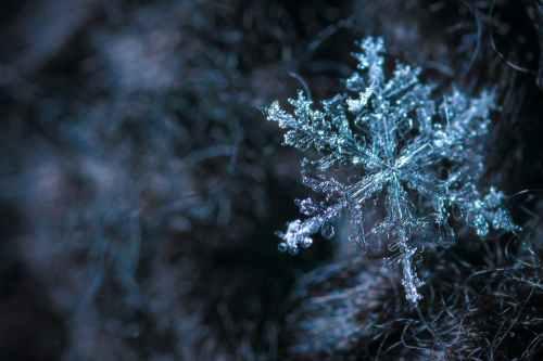 10 Ways To Enjoy Your Snow Day